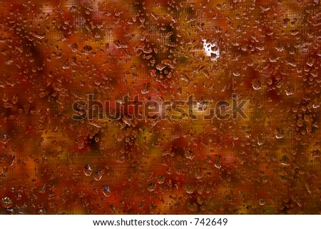 Raindrops on window with fall colors