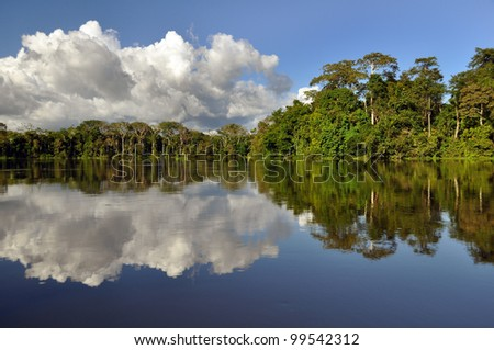 rainforest and clouds mirroring in the amazonas river of brazil