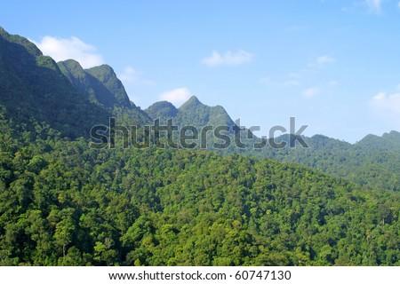 Rainforest hills on Langkawi island, Malaysia #60747130