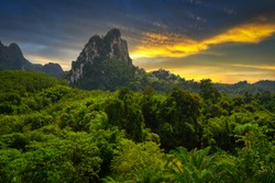 Rainforest of Khao Sok National Park at sunset, Thailand