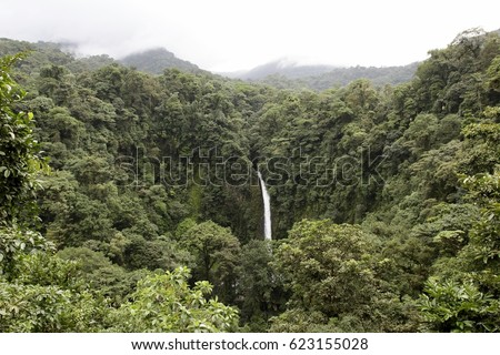 rainforest waterfall #623155028