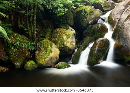Rainforest waterfall, with soft-flowing water admidst moss-covered boulders and treeferns.  Yarra Ranges, Victoria, Australia