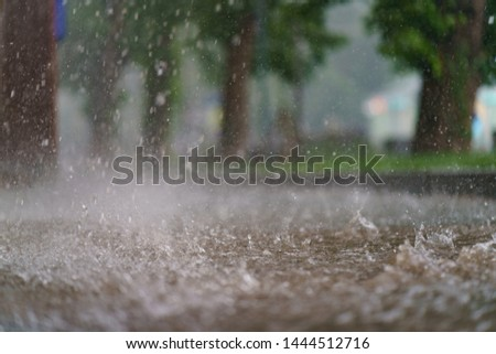 Raining day in the city at the summer time. Texture of strong, fresh and powerful water drops and sprays. Puddle with ripple on the road. Tropical rains in Moscow as a result of global warming