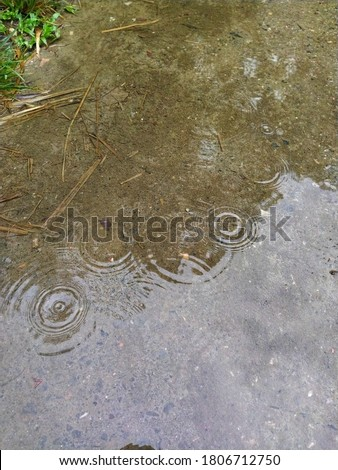 Rainwater and rain drops on pitch poud road Stock Photo. Photo stock ©