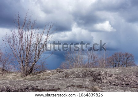Rainy clouds over horizon. Naked branches of a shrub and grey stone surface on foreground. The foreground  is still under the sun and has a hope to survive, to be free. Gloomy sky with large clouds.  #1064839826
