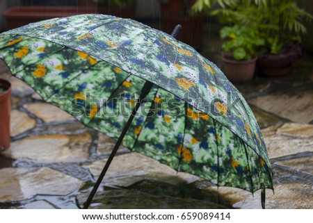 Rainy garden, rain umbrella rain #659089414