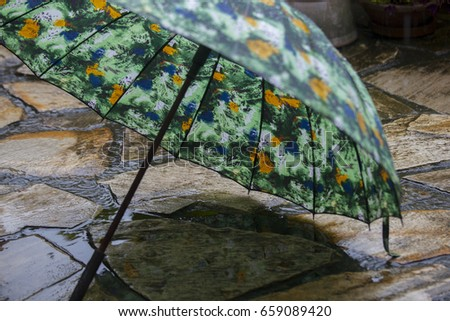 Rainy garden, rain umbrella rain #659089420