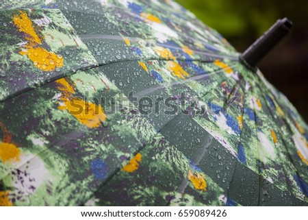 Rainy garden, rain umbrella rain #659089426