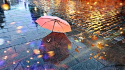 Rainy  Weather ,Autumn leaves falling  on road , pink umbrella on pavement city night light blurred at evening