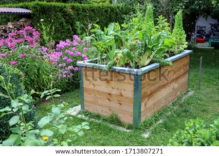 Raised-bed gardening, garden with a wooden raised-bed planted with vegetables and lettuce Stock photo ©