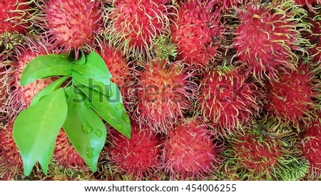 rambutan with green leaves #454006255