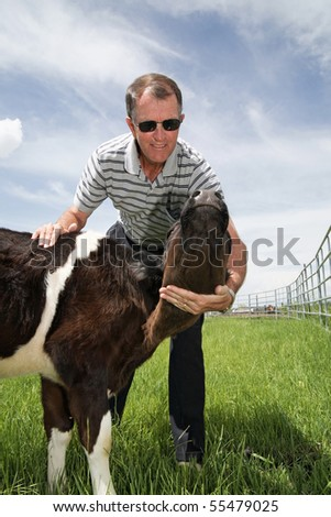 rancher in casual clothing playing with a black and white calf in a countryside field