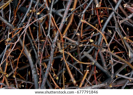 Randomly spaced branches. Background with brown branches. Brown branches. #677791846