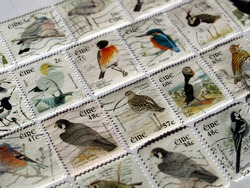Range of Irish postage stamps with birds