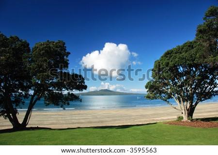 Rangitoto island through the trees, Auckland, New Zealand