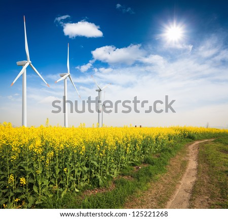 rapeseed field with wind turbines against a blue sky