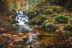 Rapid mountain river in the forest. After the rain, the river has risen and flows downhill in a strong stream. River bed with foaming water and numerous stones. Colorful autumn in the trees.