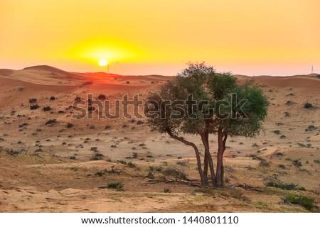 Ras al Khaimah (Ra's al-Chaima), Vereinigte Arabische Emirate, Asien