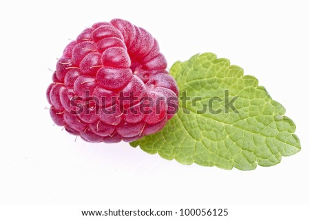 Raspberries with great colors in white background - stock photo