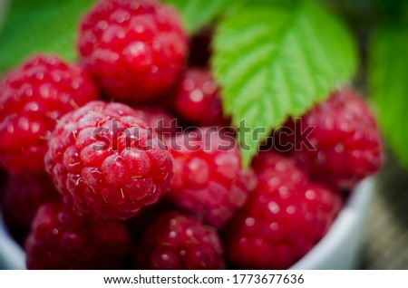 Raspberry berries and green leaf close up