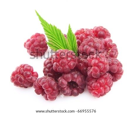 Raspberry berry on a white background #66955576