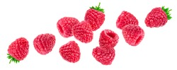 Raspberry isolated on white background with clipping path, falling raspberries, collection