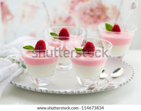 Raspberry yogurt dessert in glasses - stock photo