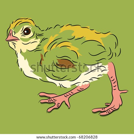 Raster chick in linear style on green background walking