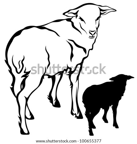raster - cute sheep illustration - black outline against white  (vector version is available in my portfolio)