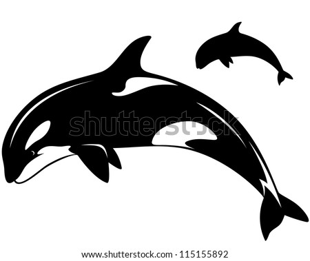 raster - killer whale illustration - black and white outline and silhouette (vector version is available in my portfolio)