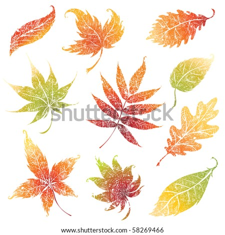 RASTER set of autumn grunge leafs - design elements. Thanksgiving
