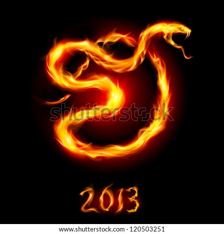 Raster version. Card with Fire Snake. Illustration on black background