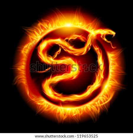 Raster version. Colorful Card with Fire Snake. Twenty thirteen new year.