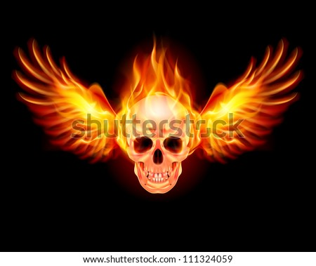 Raster version. Flaming Skull with Fire Wings. Illustration on black
