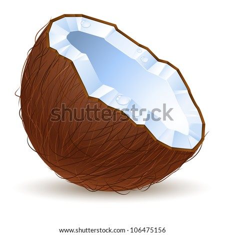 Raster version. Half a coconut.  Illustration for design on white background
