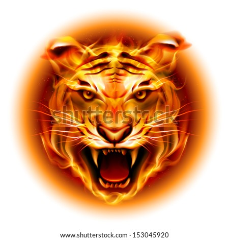 Raster version. Head of agressive fire tiger isolated on white background.