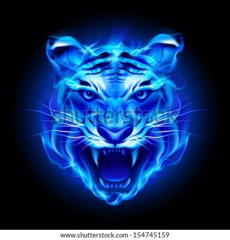 Raster version. Head of fire tiger in blue. Illustration on black  background.