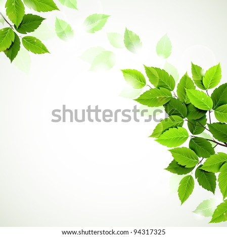raster version of branch with fresh green leaves