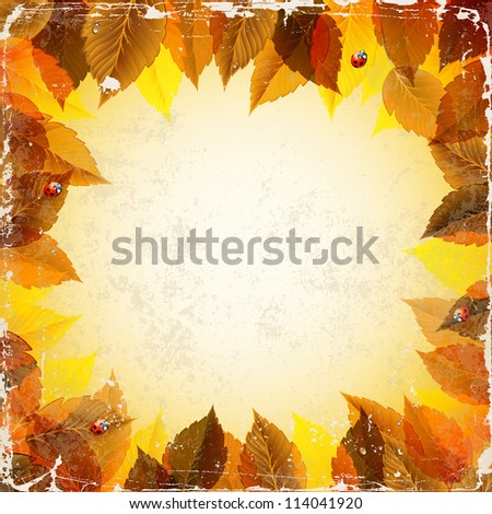 raster version of frame with autumn leaves and ladybirds