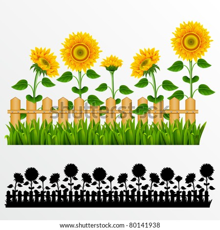 Raster version of vector border with sunflowers and fence.(can be repeated and scaled in any size)