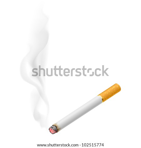 Raster version. Realistic burning cigarette.  Illustration on white background