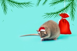 rat - symbol of 2020 in a Santa Claus hat and with a bag of gifts on a mint background