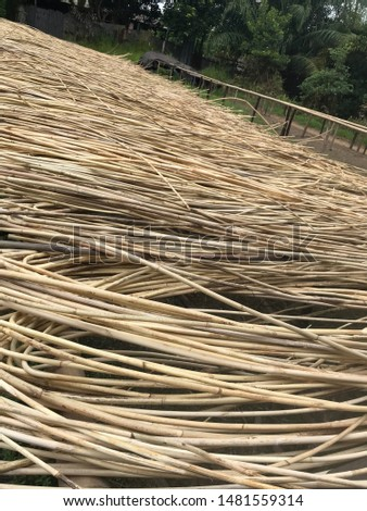 Rattan Production from down stream to up stream