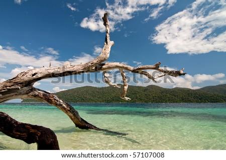 Ravi island
