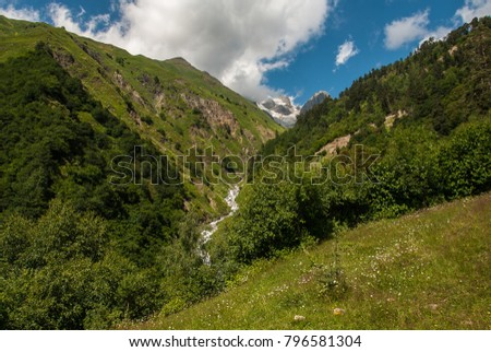 Ravine with a mountain river, slopes of Ushba