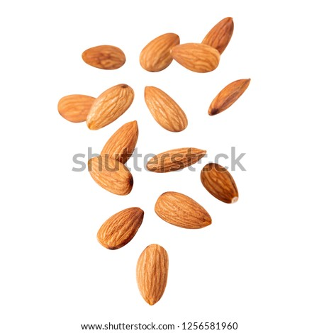Raw Almond. Almond nut fly  isolated. Full depth of field.Nuts collection.