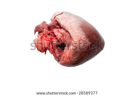 raw animal heart isolated on white background