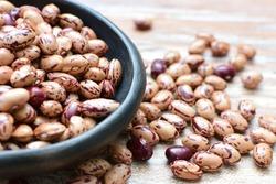 Raw bean grains (Phaseolus vulgaris) displayed in bowl