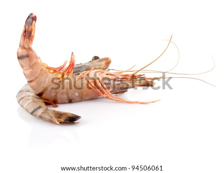 Raw Black Tiger Shrimp Isolated on White Background - stock photo