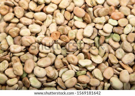 raw broad beans are scattered as a background. place for text. bean texture clearly visible